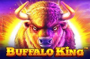 buffalo-king-qqsutera